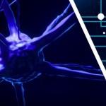 20180808-AdvancedScienceNews-HydrogelBMI